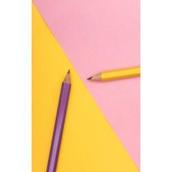 Kalem kılıçtan keskindir...